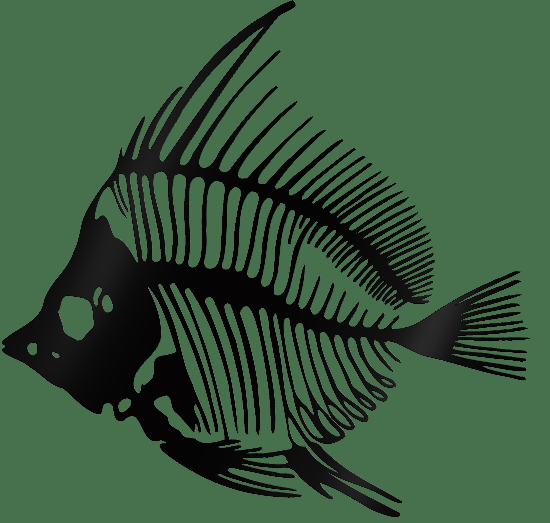 3er Fisch-Set in Schwarz